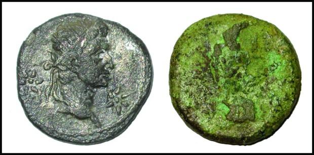 Grayshott's Roman Coins
