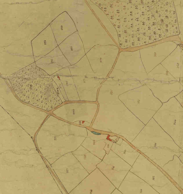 1846 Tithe Map Grayshott Farm Area