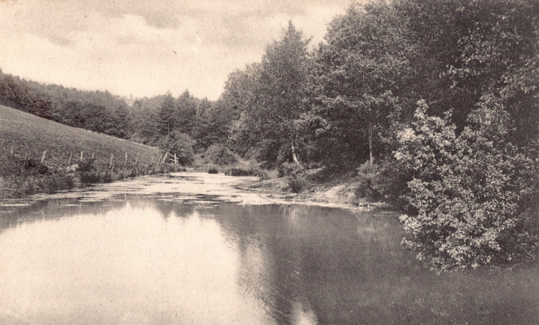Stoney Bottom Pond circa 1900